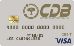 Regular Visa Card